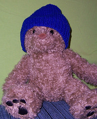 my teddy bear wearing a blue beanie